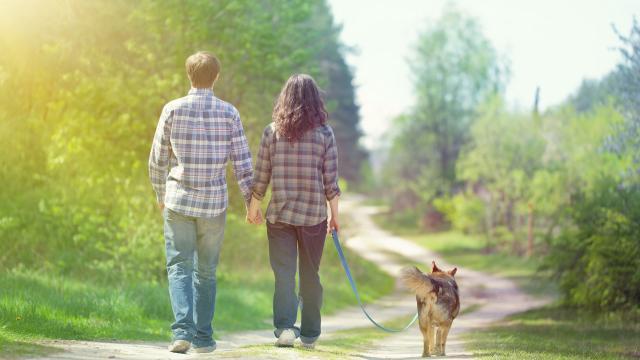 Caminar puede ser el mejor consejo que jamás hayas recibido