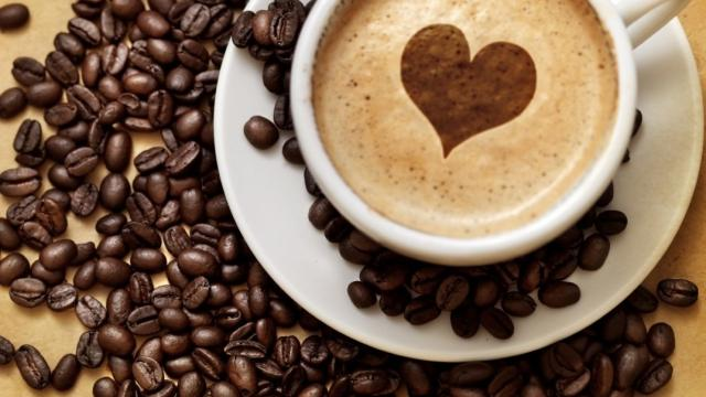 Receta de crema de café expreso y genoise de chocolate