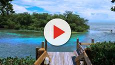 Vídeo: Os lugares mais procurados para aventuras e passeios na Flórida.