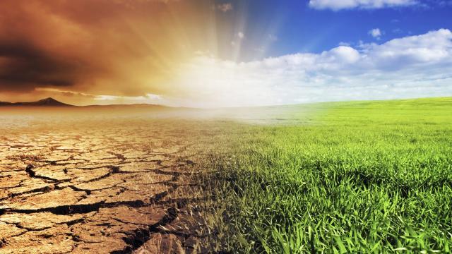 El cambio climático puede estar detrás del chasquido frío en el noreste