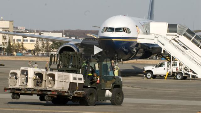 Las aerolíneas se ponen difíciles con las 'mascotas de apoyo'