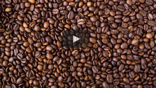 ¡Los restos del café de grano pueden ser el nuevo combustible para autos!