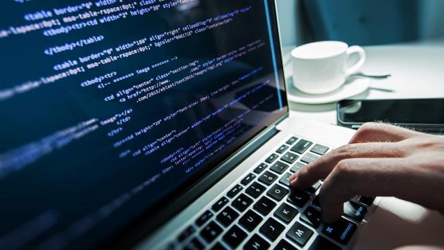 ¿Cómo las personas sin experiencia se convierten en programadores?