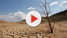 Ciudad del Cabo podría ser la primera cuidad del mundo en quedarse sin agua