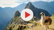 Vídeo: a viagem para MachuPicchu