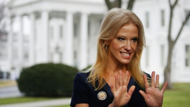 Kellyanne intentó explicar por qué Donald Trump era un líder serio en Washington