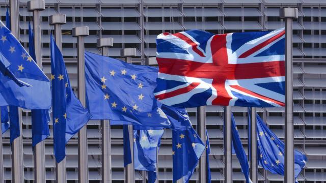 El gobierno no puede gobernar debe hacerse cargo Brexit