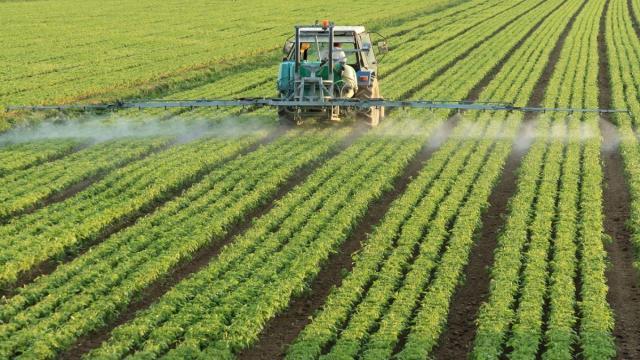 Medidas simples contra los pesticidas