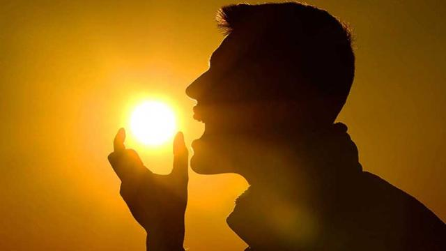 Según un estudio, la vitamina D no previene las enfermedades