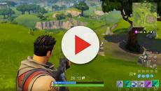 'Fortnite' gamer won a match without moving forward