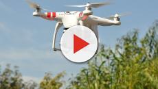 Drones ayudan a los científicos a luchar contra la extinción de vida silvestre
