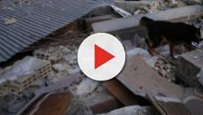 Terremoto di MAgnitudo 7.2 colpisce il Messico