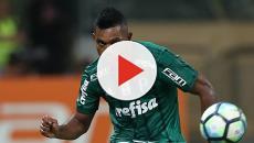 Vídeo: saiba se Miguel Borja enfrentará Corinthians