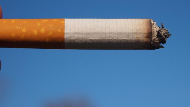 La labor de una limpieza extrema, puede ser equivalente a fumar 20 cigarrillos