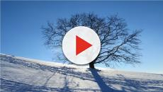 Olimpiadi invernali, orari 21 febbraio: c'è la discesa femminile