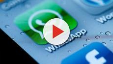 Ultimo aggiornamento WhatsApp 21 febbraio: nuova funzione nei gruppi
