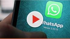 WhatsApp mostrará sua localização em tempo real para seus amigos