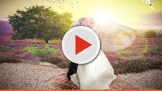 Cinco apps ótimos para te ajudar a planejar seu casamento