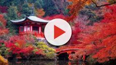 Japón: Más extranjeros eligen Kioto como destino de bodas