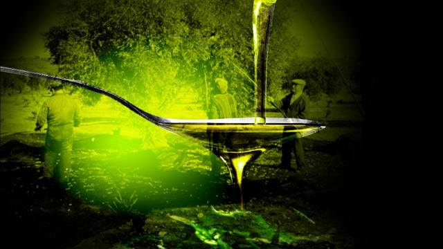 Un estudio muestra que el aceite de oliva puede proteger nuestro cerebro