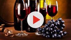 ¿El vino se produce solo de uvas?