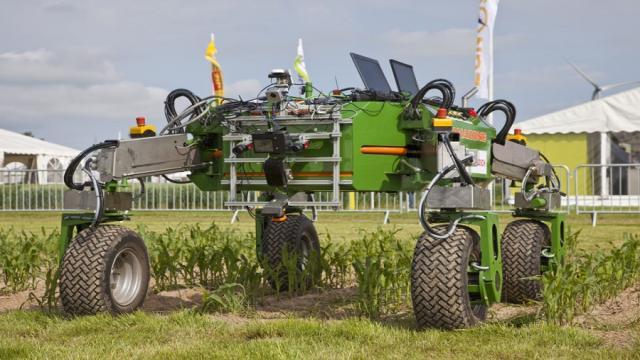 Inteligencia Artificial en la Agricultura