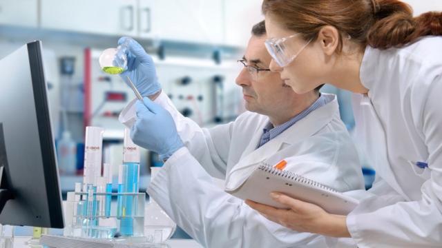 Las pruebas de cultivo se utilizan para comparar los rendimientos productivos