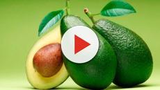 Los mejores alimentos para reducir el colesterol en la sangre