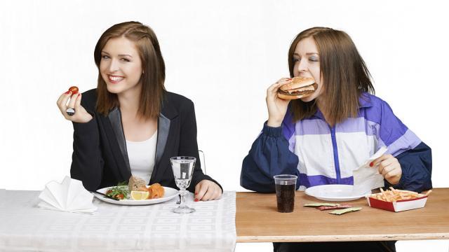 El aparato digestivo y la transformación alimenticia