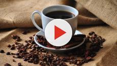6 alternativas saludables que pueden reemplazar el café