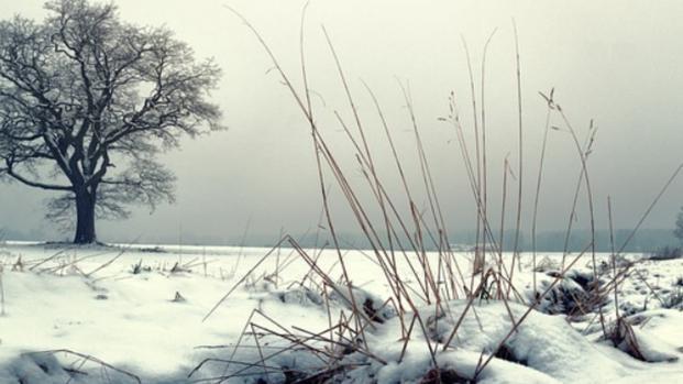 Burian: possibile influenza a causa del freddo