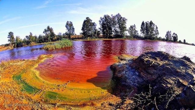 Ministerio de Medio Ambiente, Contaminación de metales pesados