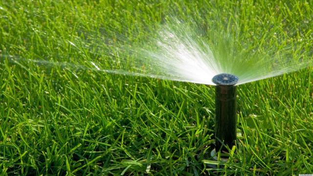 Manejo del riego para prevenir la fusariosis en los cereales