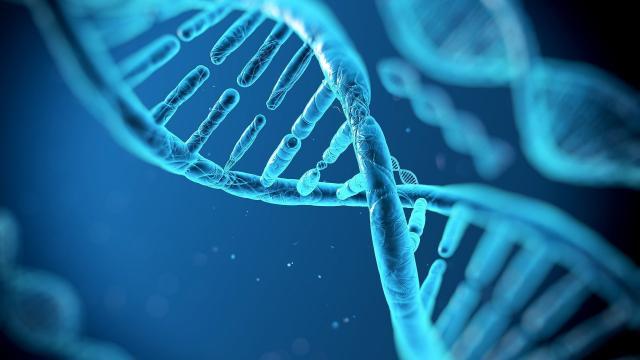 Descubrimiento de la molécula asesina del ADN enfermo