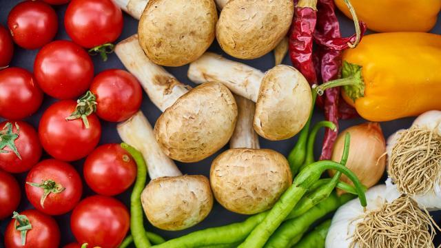 10 alimentos que se recomiendan en la vida cotidiana
