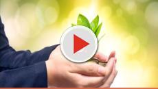 5 dicas para incentivar seus filhos a praticarem sustentabilidade