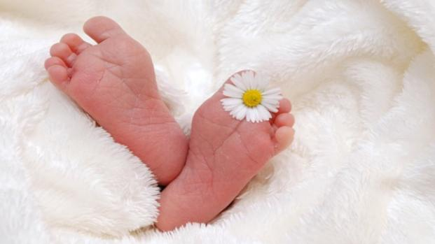 Gravidanza: da evitare la dieta vegana, possibili danni al feto