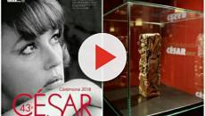 César 2018 : Rubans blancs et stars debout pour soutenir les femmes !