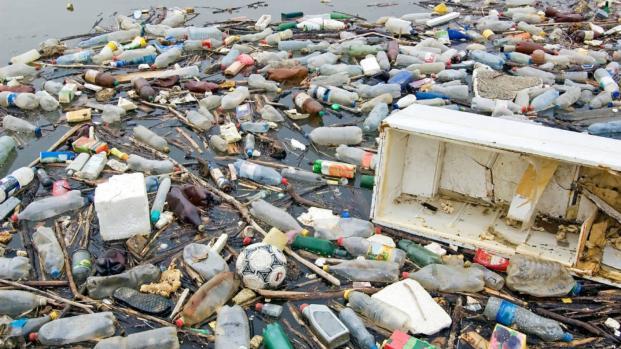 Cómo una ciudad de California intenta salvar el medio ambiente