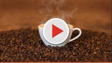 Os benefícios proporcionados pelo café