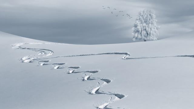 Nieve: cómo justificar la ausencia en el trabajo