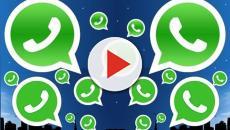 WhatsApp testa serviço de transferência de dinheiro entre usuários