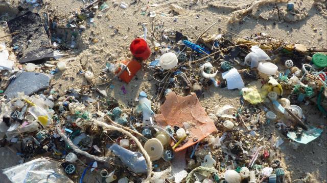 Los desechos plásticos reciclados pueden resolver muchos problemas