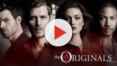 Hayley poderá viver um novo amor em The Originals; como reagirá Hope?