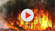 Com o verão, os riscos de incêndios são constantes