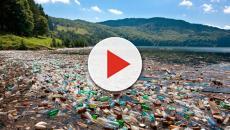 Il krill modifica le dimensioni della plastica