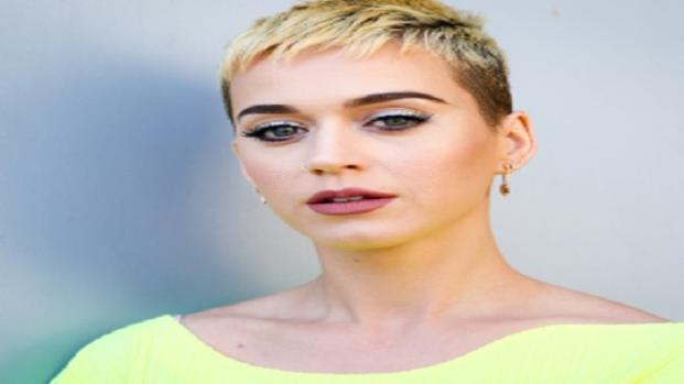 Le roban un beso a Katy Perry  en American Idol