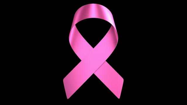 Tumores, ¿la hibernación es la nueva cura contra el cáncer?