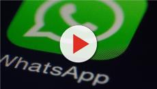 WhatsApp, ban in arrivo sulla piattaforma: ecco perché