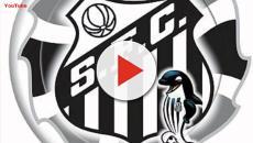 Vanderlei na Seleção? Presidente do Santos comenta